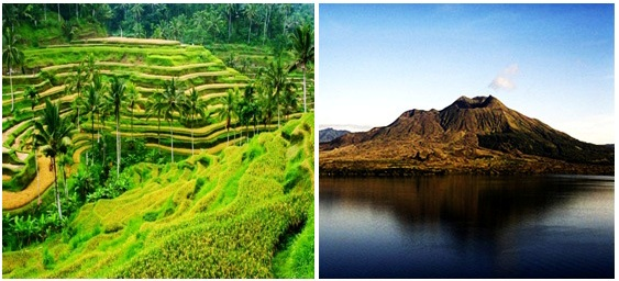 Ubud-in-Bali-Tour