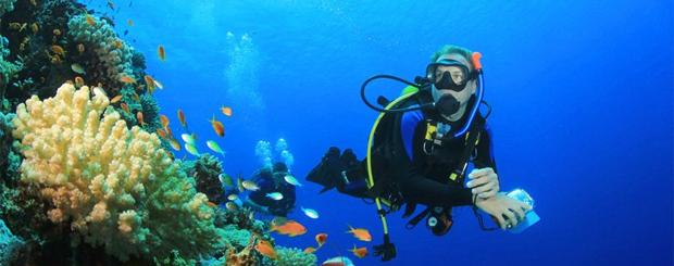 Scuba-Diving-in-Spain-Tour