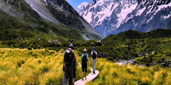 New Zealand group tours
