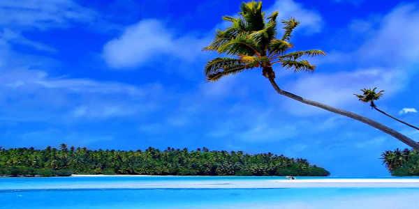 Bahamas tours