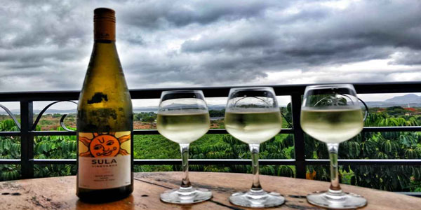 Sula Vineyards Things to do