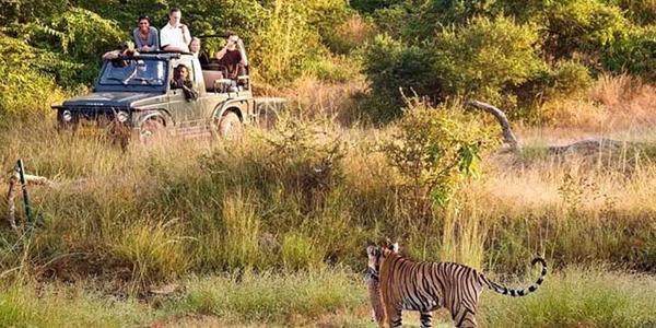 Kumbhalgarh Places to visit